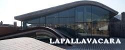 Lapallavacara