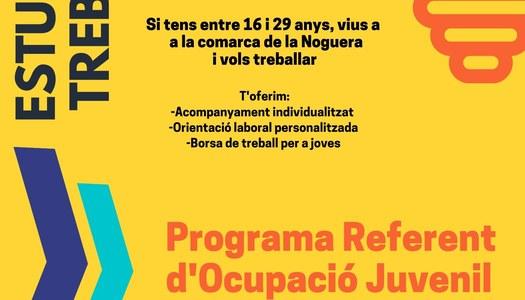 Estudies o treballes? Programa d'Ocupació Juvenil