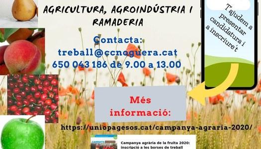 Oferta de feina al sector agrari