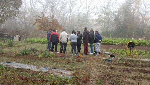 Finalitzen el tallers del programa Col·labora per a famílies usuàries dels Serveis Socials del Consell Comarcal de la Noguera